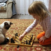 Girl playing chess with a cat