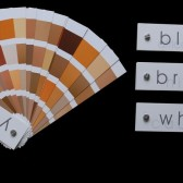 race color swatches